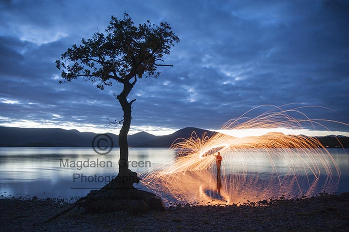 Image of Famous  Lone Tree at Milarrochy Bay Loch Lomond Scotland