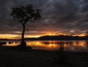 Image of Sunset of Burnished Gold over Loch Lomond at Milarrochy